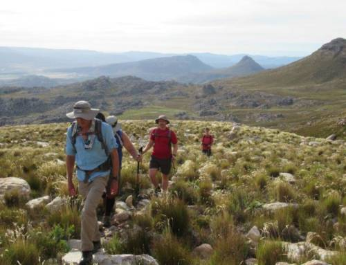 Sneeuberg – Highest summit in the Cederberg range (2,027m)